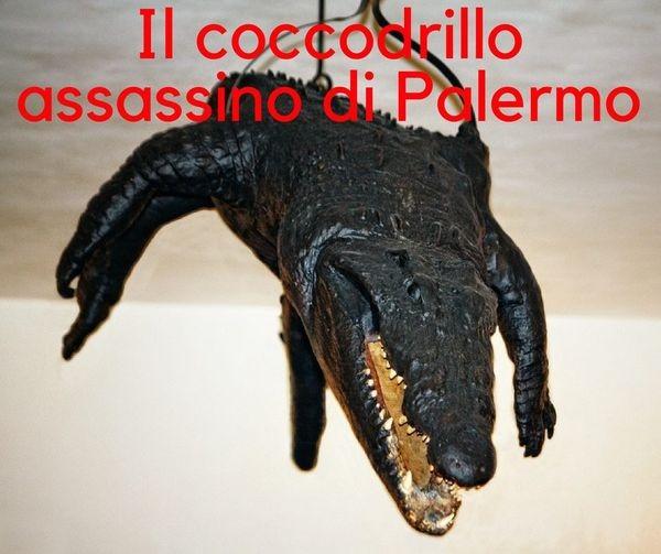 La leggenda del coccodrillo assassino di Palermo